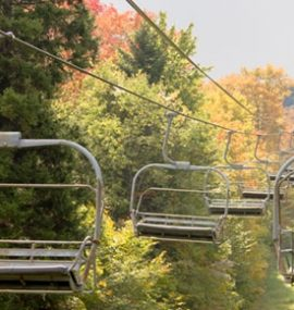 A chairlift travels through dense forest.